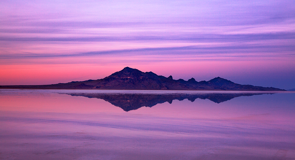Salt Flats in Lavender