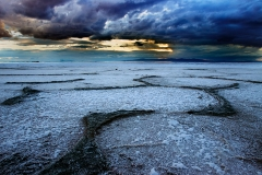 Salty Shore