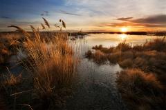 Golden Salt Lake